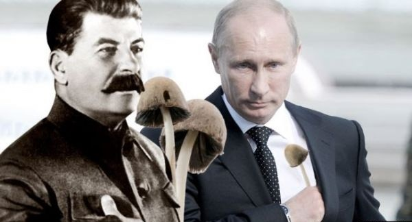 """""""Лаборатория ядов"""". Зловещая история кремлевских отравителей"""