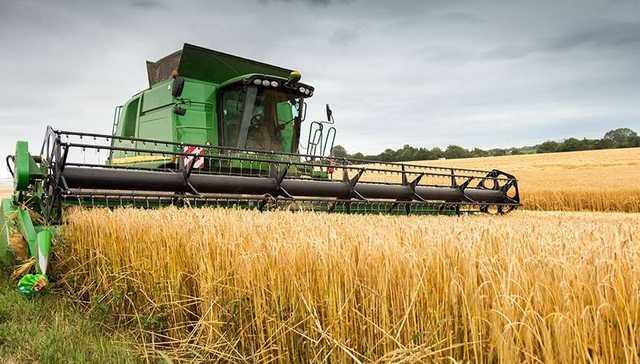 Мишустин ввел экспортные пошлины на пшеницу, кукурузу и ячмень